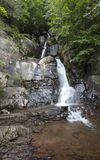Buttermilch fällt in Lehigh-Schlucht-Nationalpark Pennsylvania Stockfotografie