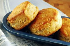 Buttermilk Biscuits royalty free stock photo