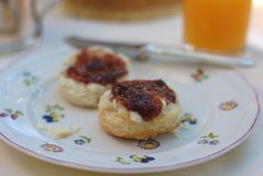 Buttermilk biscuits. Homemade jam and biscuits in the courtyard Royalty Free Stock Images