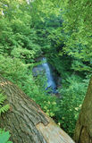 Buttermilk Falls, Pa. Royalty Free Stock Image