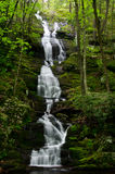 Buttermilk Falls After a Spring Rain Royalty Free Stock Photography
