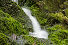 Buttermilk Falls. Water cascades over the mossy rocks of Buttermilk Falls in the Delaware Water Gap National Recreation Area in Walpack, New Jersey, USA Royalty Free Stock Image