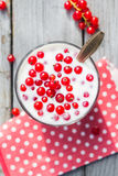 Buttermilk fruit red currant table garden Royalty Free Stock Photo