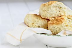 Buttermilk Southern Biscuits in a Bowl. Fresh buttermilk southern biscuits or scones from scratch in a white bowl royalty free stock photos