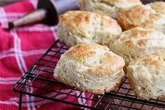 Buttermilk Southern Biscuits on Cooling Rack. Freshly baked buttermilk southern biscuits or scones from scratch cooling on a cooling rack royalty free stock photos