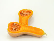 Butternut Stock Photo