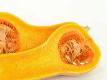 Butternut Royalty Free Stock Images