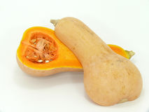 Butternut Stock Images
