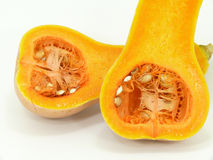 Butternut Stock Photography