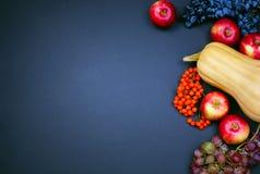 Butternut kabaczek, jabłka, winogrona i rowan jagody na ciemnym tle, Zdjęcie Stock