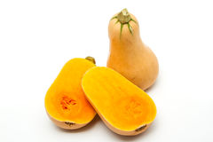 Butternut Stock Photos