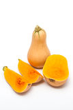 Butternut. A kind of pumpkin Royalty Free Stock Photography