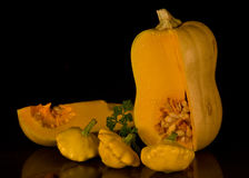 Butternut pumpkin. Putter nuts are probably the most popular pumpkin used for meals Royalty Free Stock Image