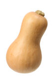 Butternut Pumpkin Royalty Free Stock Photography