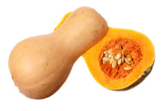 Butternut Pumpkin Stock Images