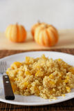Butternut quinoa pilaf Royalty Free Stock Photo