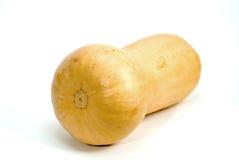 Butternut Squash Stock Image