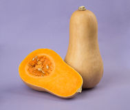 Butternut squash Royalty Free Stock Image