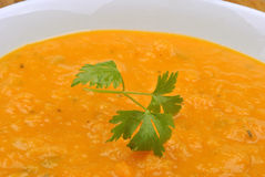 Butternut squash creme soup Stock Photography