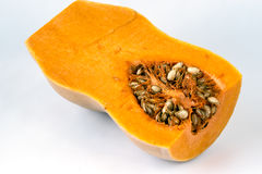 Butternut squash (Cucurbita moschata) Stock Photography