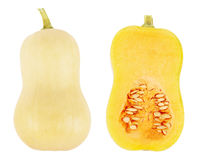 Butternut squash isolated Royalty Free Stock Photography