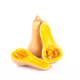 Butternut Squash Isolated on white background Royalty Free Stock Photo