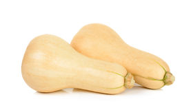Butternut squash isolated Royalty Free Stock Photos