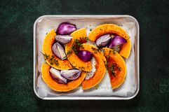 Squash Slices with Red Onions to Roast. Butternut Squash Slices with Red Onions and Thyme Prepared for Roasting royalty free stock photography