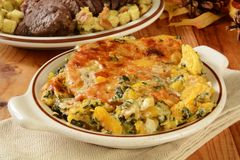 Butternut squash and spinach gratin Royalty Free Stock Photography