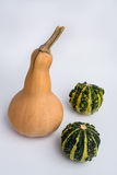 Butternut squash with two decorative pumpkins on white backgroun. Butternut squash and two decorative pumpkins on white background Stock Images