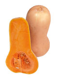 Butternut Squashes Royalty Free Stock Photos