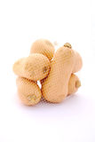 Butternuts in net Royalty Free Stock Photo