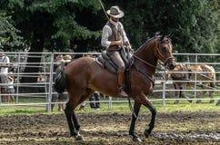 Buttero a cavalo durante um evento público foto de stock