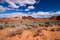 Buttes койота - волна Стоковое фото RF