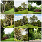 Buttes-Chaumont park Royalty Free Stock Images