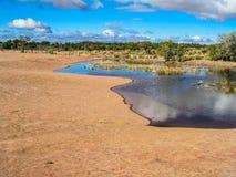 Buttes du sud de coyote Images libres de droits