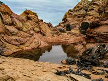 Buttes du sud de coyote Images stock