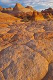 Buttes van de coyote Stock Foto's