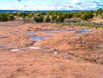 Buttes van de zuidencoyote Royalty-vrije Stock Afbeelding