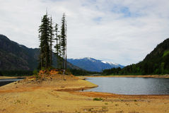 buttle brzegu jeziora Fotografia Royalty Free