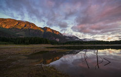 Buttle Lake. Strathcona Park on Vancouver Island near Campbell River, British Columbia Royalty Free Stock Images