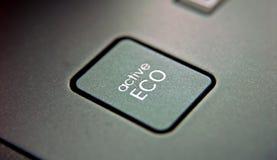 button den glansiga setvektorn för ecoen Fotografering för Bildbyråer