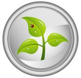 Button with a green tree,  Royalty Free Stock Photos