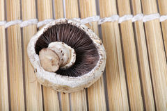 Button mushroom Royalty Free Stock Photo