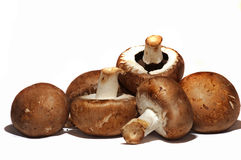 Button mushrooms Royalty Free Stock Image