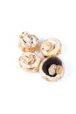Button mushrooms. Beautiful shot of button mushrooms on white background Stock Photo
