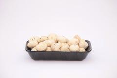 Button mushrooms Stock Image