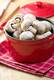 Button mushrooms in red pot Stock Image