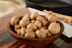Button mushrooms Stock Photography