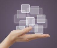 Button on the palm. Stock Photos